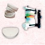 Dentalgipse